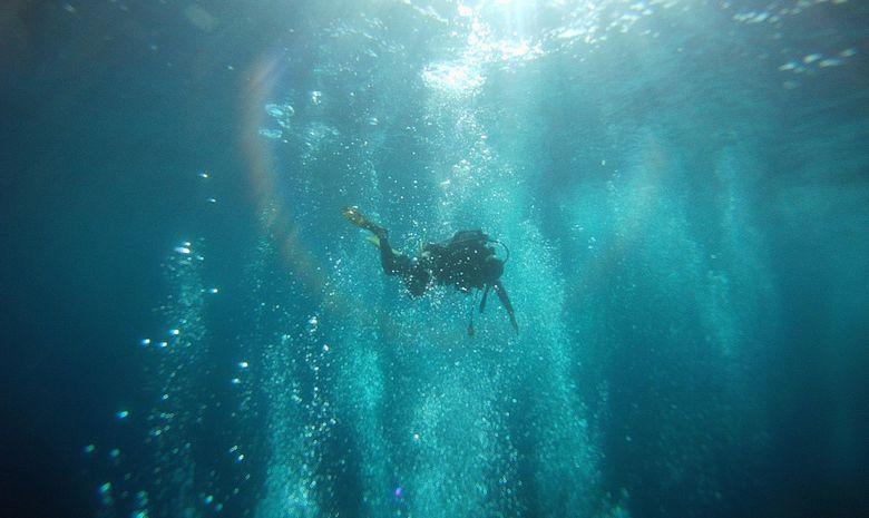 Formation plongeur Niveau 1 à Fréjus-6