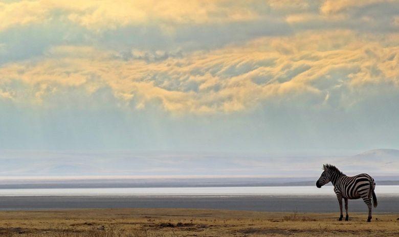 Duo Safari-Kilimandjaro par la voie Lemosho-6
