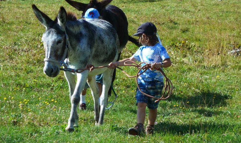 Petits nomades en Diois-4