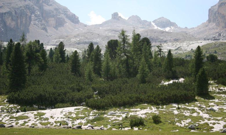 Paysage des Dolomites_2^