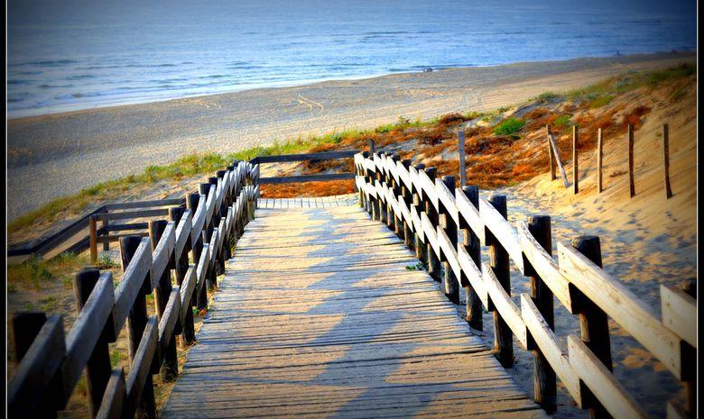 Séjour de surf & yoga sur la plage de Messanges-1