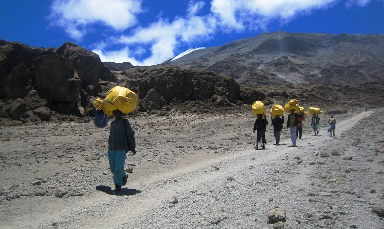 Ascension du Kilimandjaro par la Voie Lemosho-3
