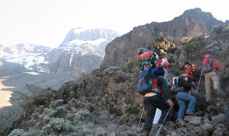 Ascension du Kilimandjaro par la Voie Lemosho-4