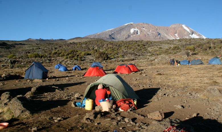 Ascension du Kilimandjaro par la Voie Lemosho-5