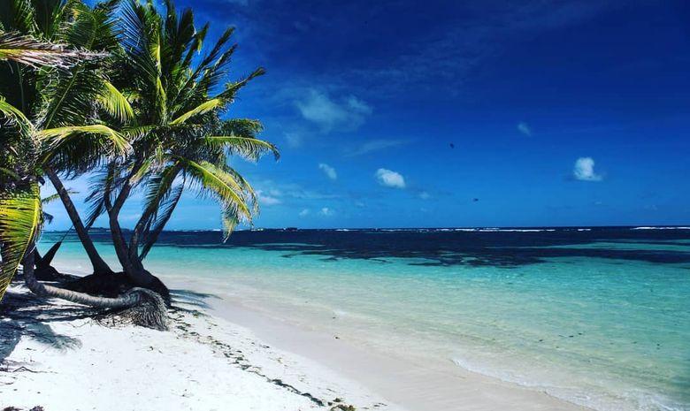 Croisière catamaran : Sainte-Lucie & Martinique