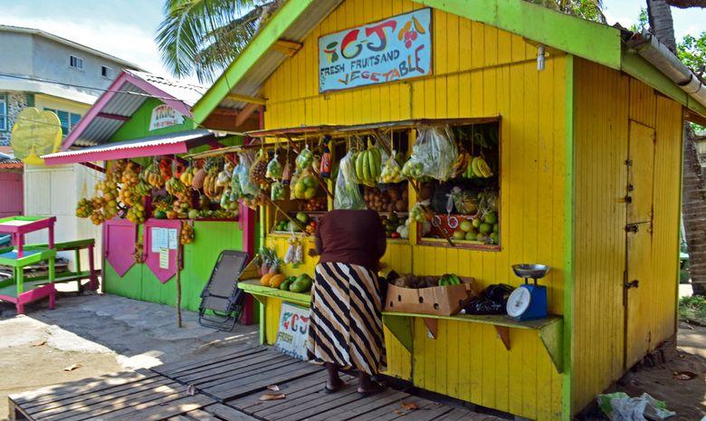 Croisière dans les Grenadines - Tout compris -13