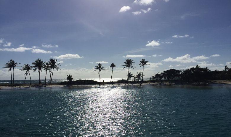 Croisière dans les Grenadines en Lagoon 400-8