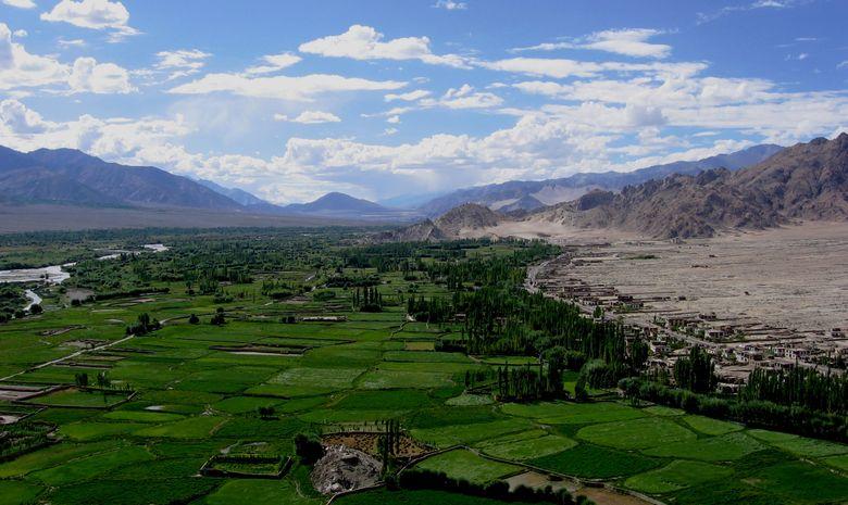 Trail au coeur du Ladakh-4