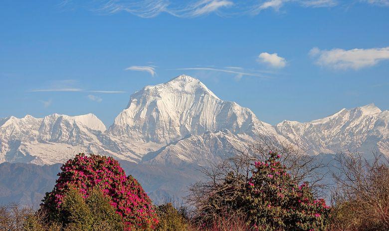 Trail sur la montagne de l'Annapurna-11