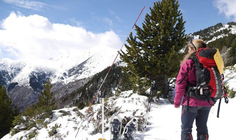 Face à la nature dans les Pyrénées-4