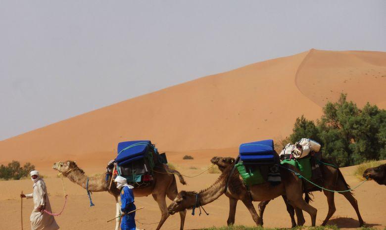 Stage de trail dans le désert avec Lahcen Ahansal