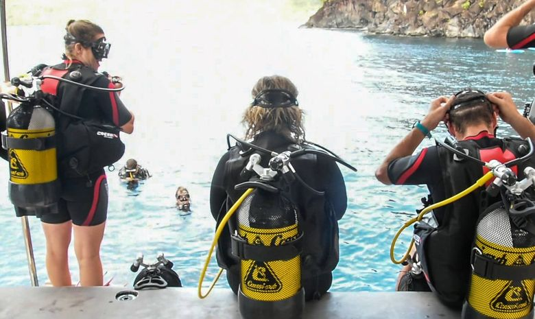 Croisière et plongée sous-marine aux Grenadines