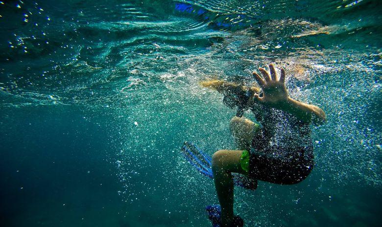 Croisière et plongée sous-marine aux Grenadines-6