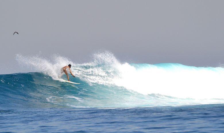 Séjour surf guiding sur la péninsule de Dakar-1