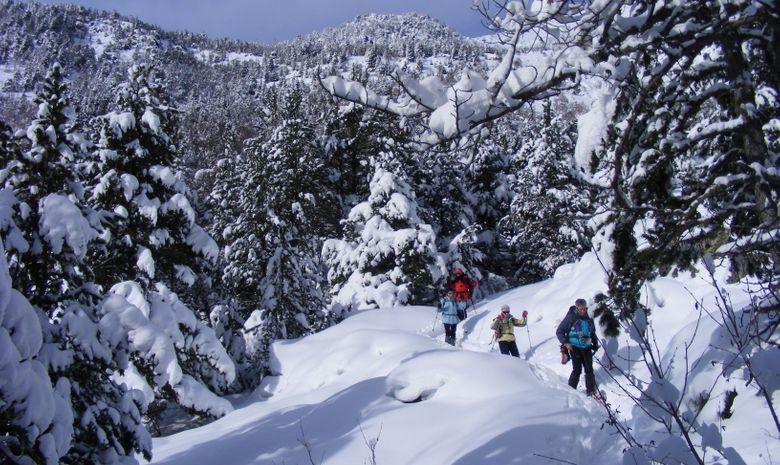 les flocons d'Andorre-14