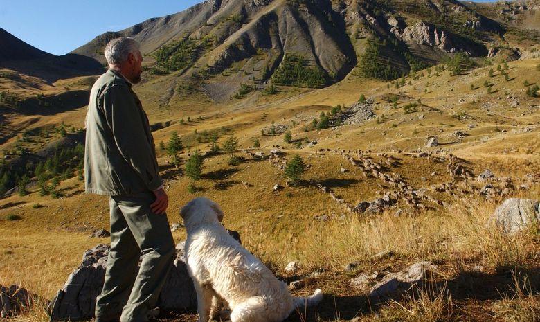 Trekking dans la Parc National du Mercantour-5