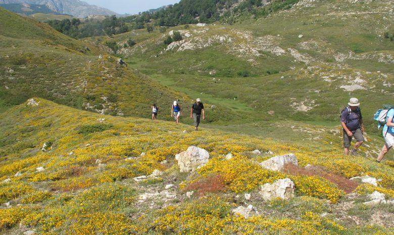 groupe marche dans une vallée