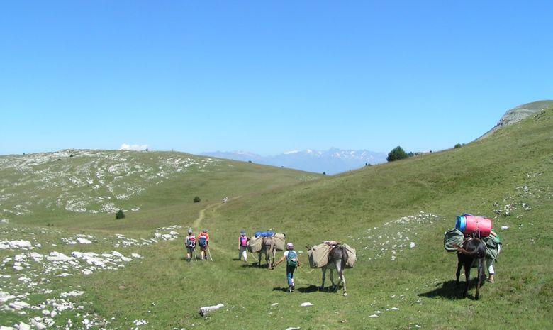 Fête de la transhumance en compagnie des ânes-3
