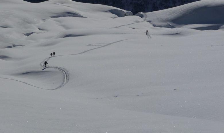 Neige avec traces randonneurs