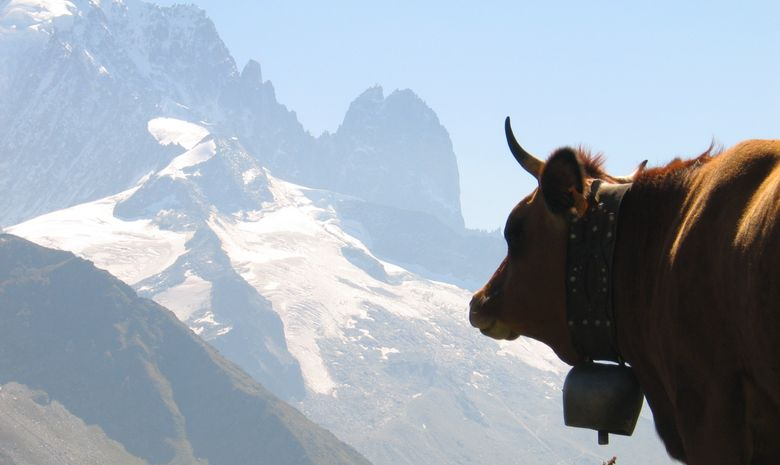 Tour du Mont-Blanc Nord - sans sac-6