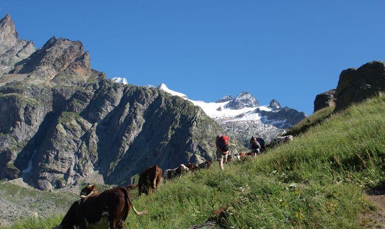 Tour du Mont-Blanc Intégral en Liberté - sans sac-4
