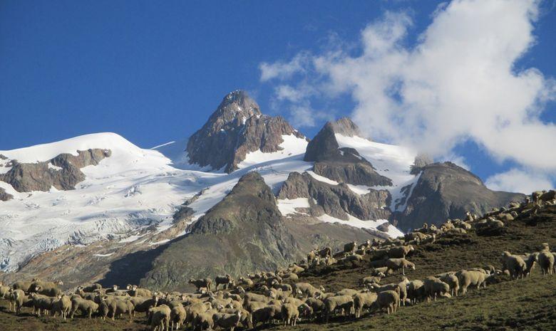 Tour du Mont-Blanc Sud en Liberté - sans sac-4