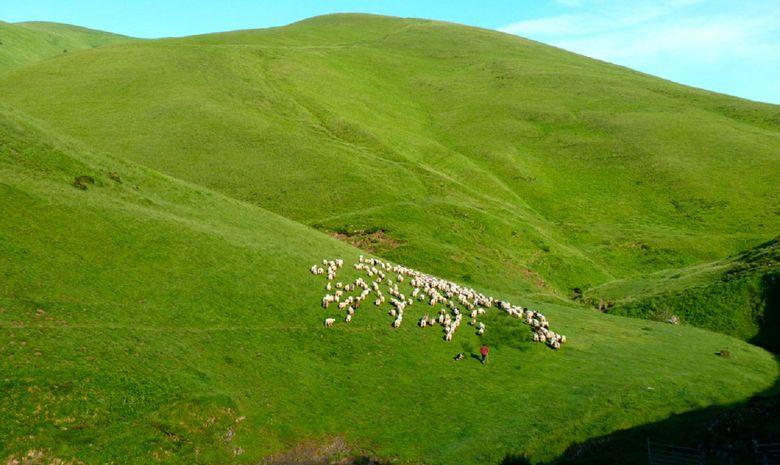 Traversée culturelle du Pays Basque-4