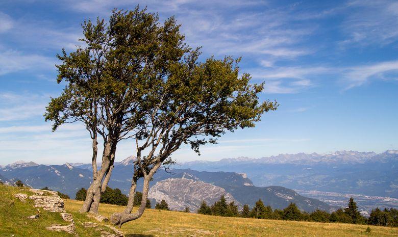 Le plateau de la Molière et la vallée de Grenoble