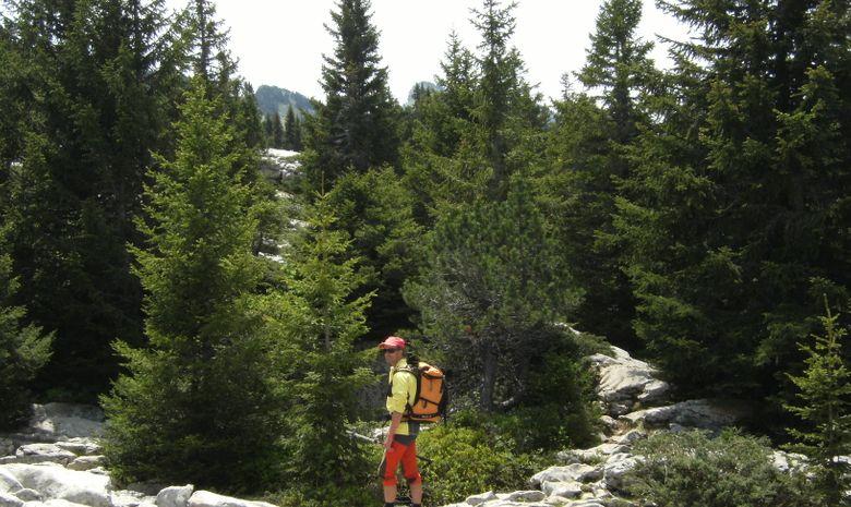 Tour du Parc naturel de Chartreuse en hôtel-3
