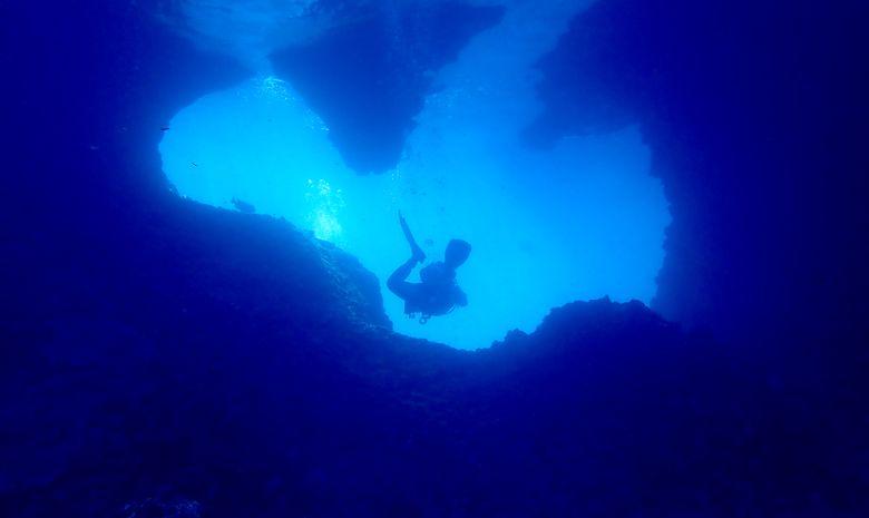 Croisière plongée dans l'Archipel de Maluku-9