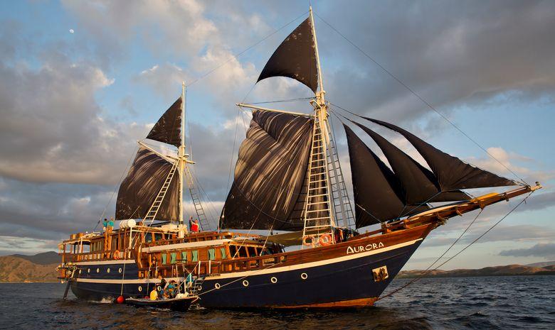 Croisière plongée dans l'Archipel de Maluku-1