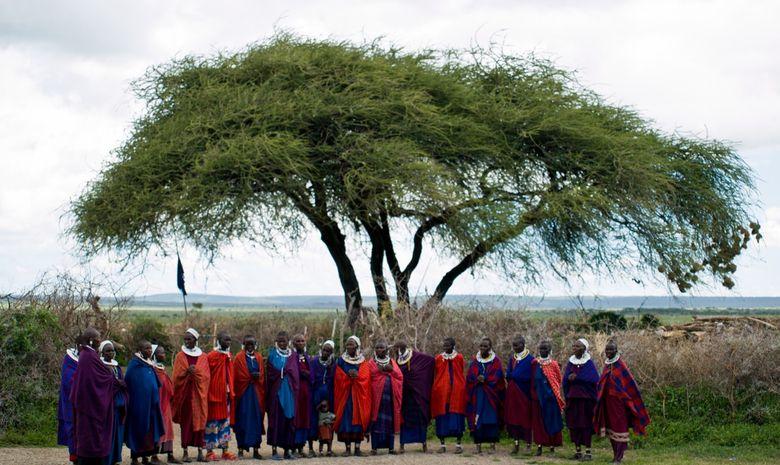Safari au cœur des plus beaux parcs de Tanzanie-1