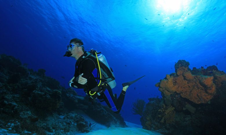 Croisière plongée dans la Péninsule du Yucatán-2
