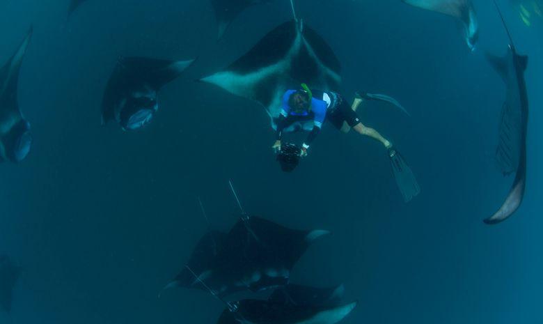 Croisière plongée 4 Atolls par la Route Nord -3