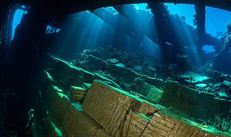Croisière plongée épaves par Ras Mohammed-8
