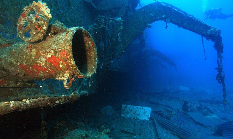 Croisière plongée du nord de la Mer Rouge à Tiran-4