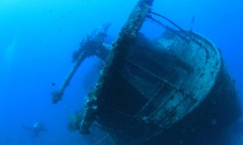 Croisière plongée du nord de la Mer Rouge à Tiran-5