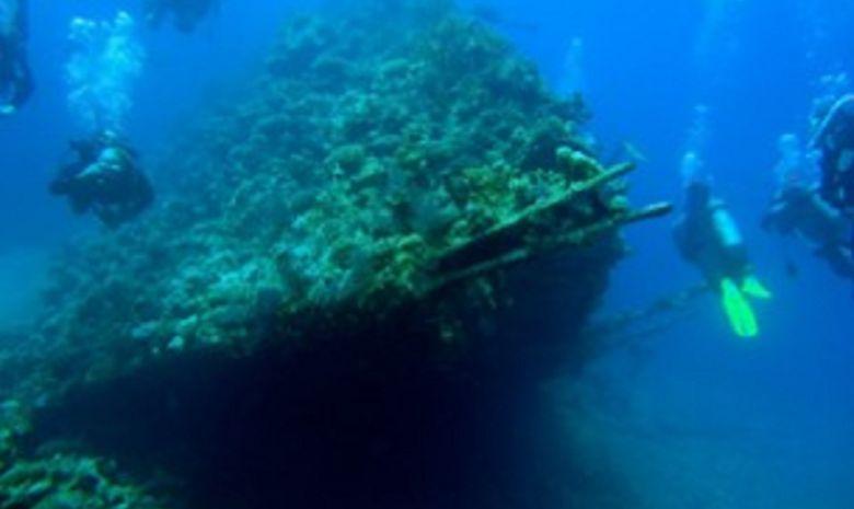plongée itinérante par les îles Brothers-13