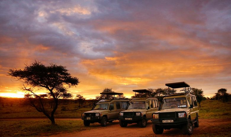 La Tanzanie entre safaris et traditions locales -15