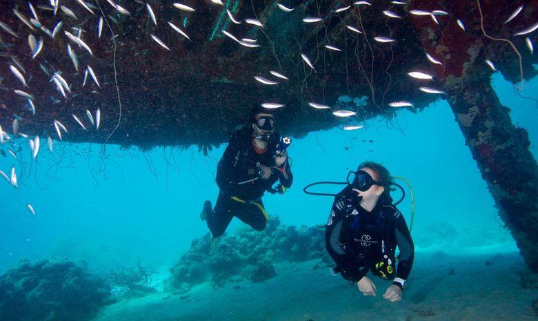 Croisière plongée découverte des sites de Suakin -6