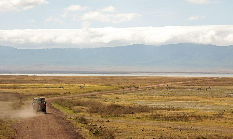 Jeep dans le Cratère du Ngorongoro