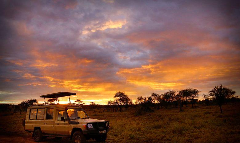 Safaris et visite d'un village Maasaï en Tanzanie-15