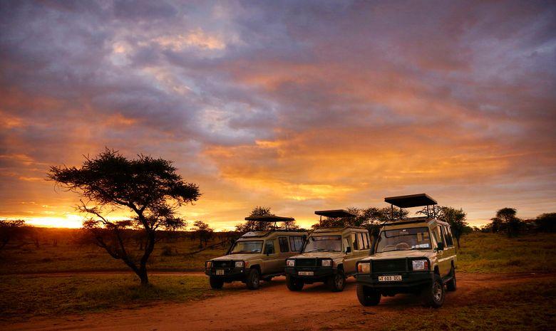 Safaris et visite d'un village Maasaï en Tanzanie-14