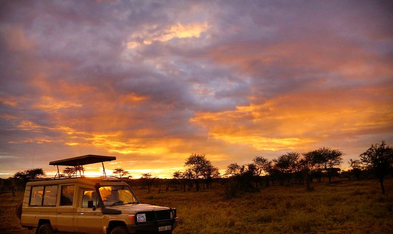 Safari, randonnées et rencontre Maasaï en Tanzanie-11
