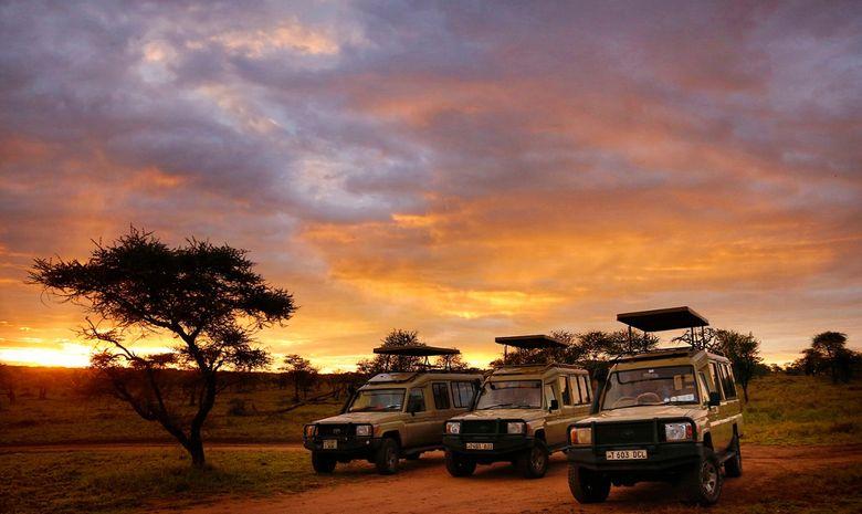 Safari, randonnées et rencontre Maasaï en Tanzanie-12