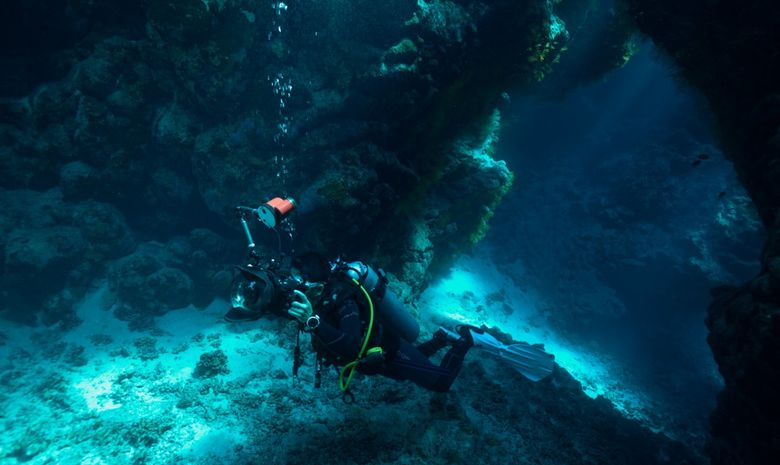 Croisière plongée découverte des sites de Safaga-2