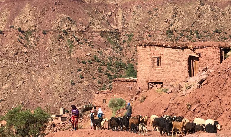 Randonnée en pays berbère