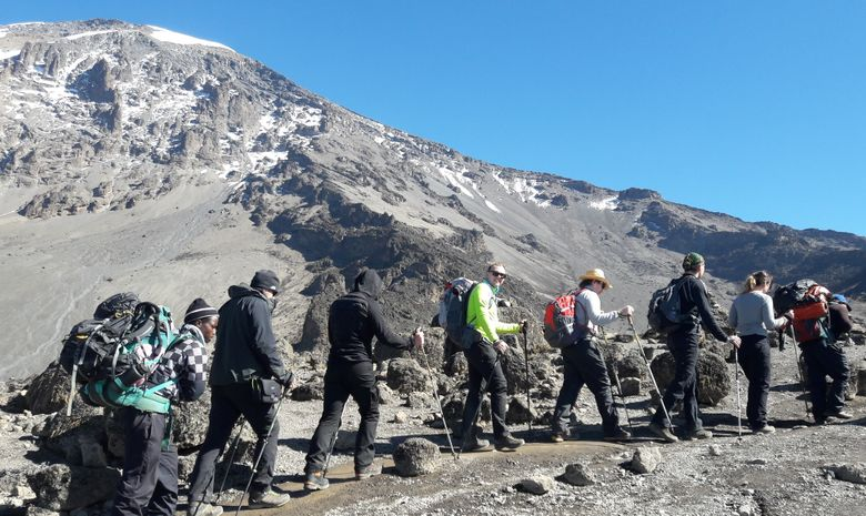 Ascension du Kilimandjaro - Voie Machame 7 jours
