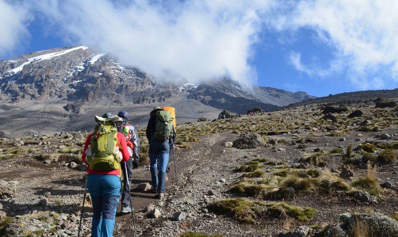 Ascension du Kilimandjaro - Voie Marangu 6 jours