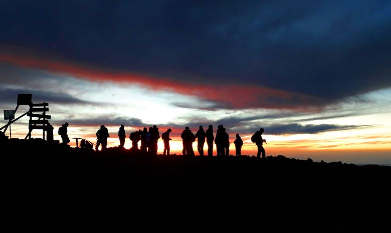 Kilimandjaro : Voie Machamé & Safari 5 jours